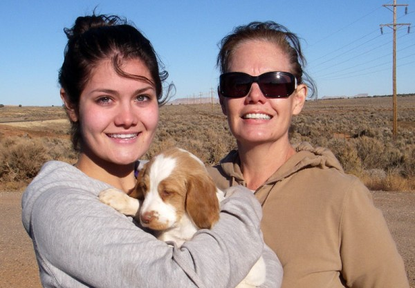 Brittany Puppy Bailey Goes Home to Arizona